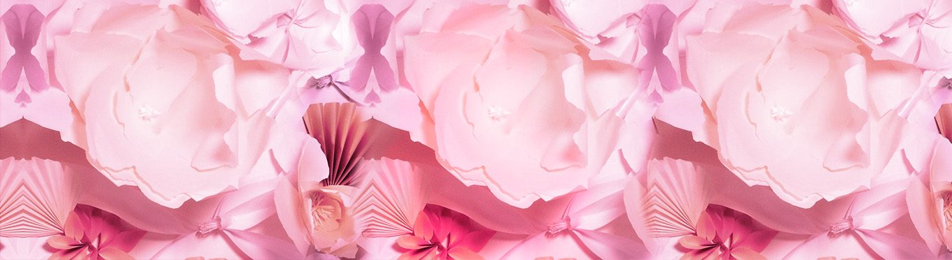 Banner image of pink flowers